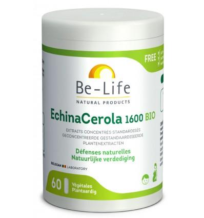 EchinaCérola 1600